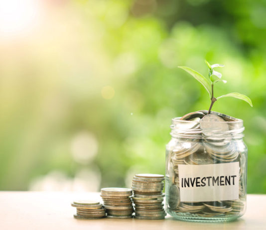 beginners guide to investment