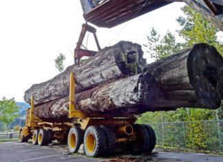 Log Truck Insurance